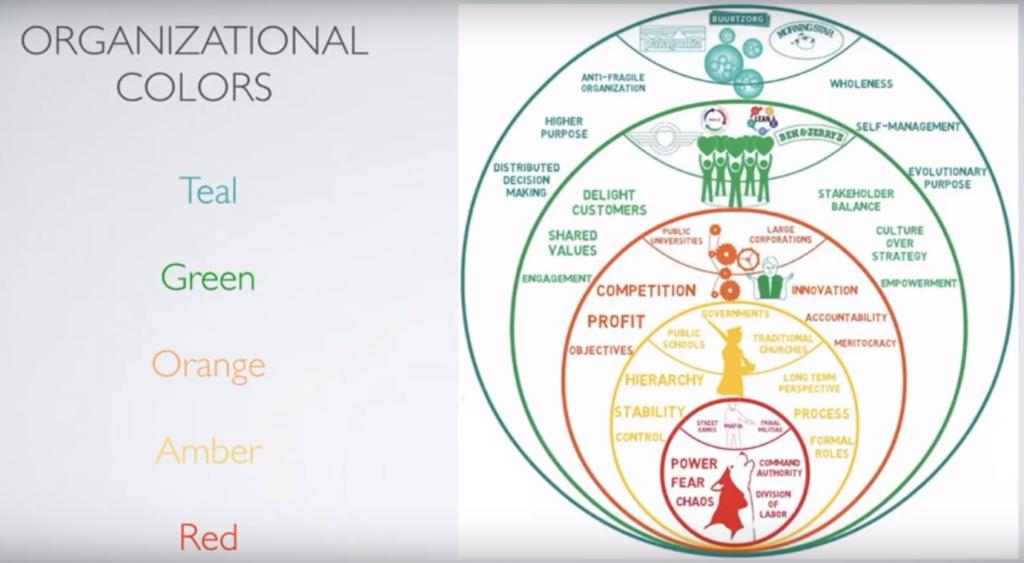 Красные, янтарные, оранжевые, зеленые и бирюзовые организации. Бирюзовые организации - вершина эволюционного развития организаций.