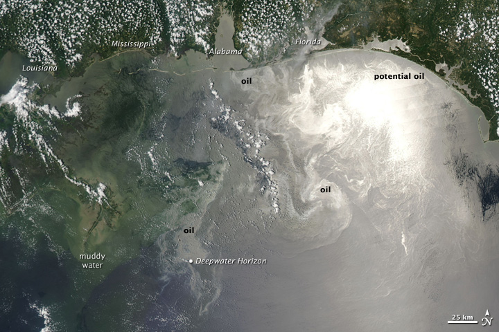 Мексиканский Залив, 12 июня 2010 года. Снимок со спутника NASA.