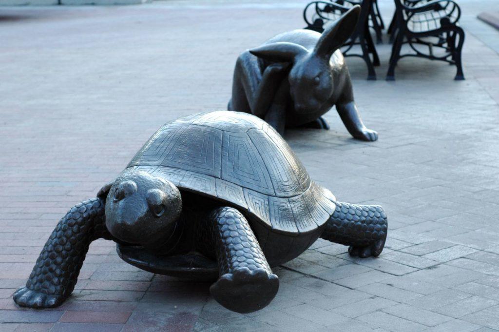 Стратегии зайца и черепахи. Какова оптимальная скорость роста бизнеса