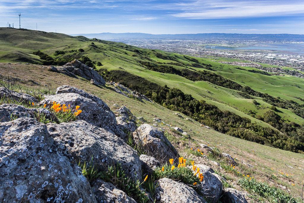 Название Кремниевая долина - откуда оно взялось, и как долина называлась до эпохи высоких технологий