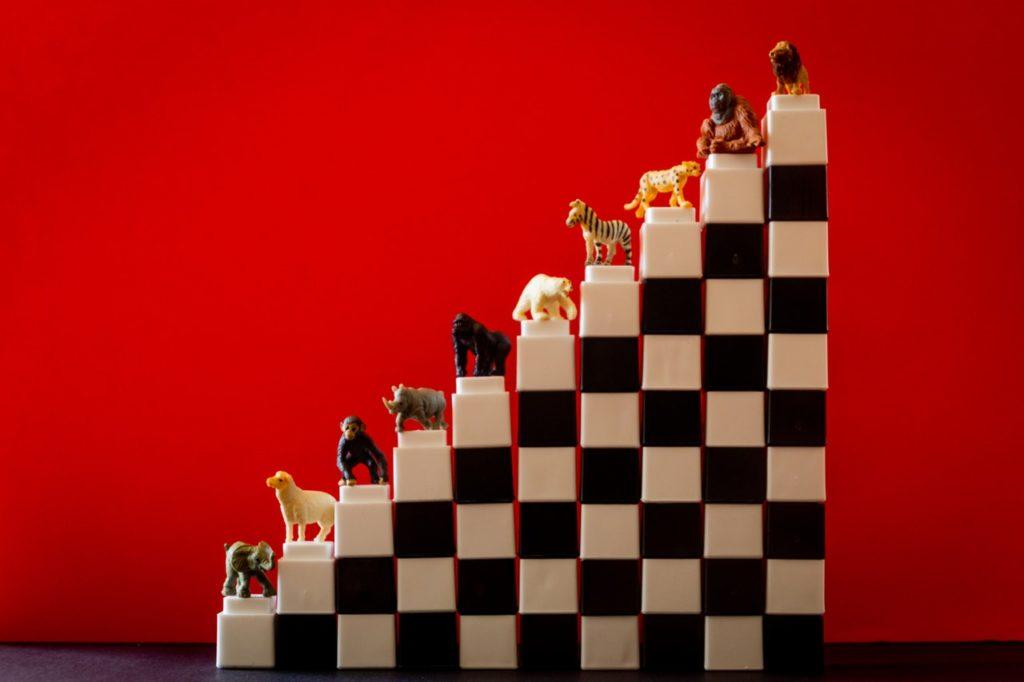 Плоская иерархия - что стоит за словами о равенстве и свободе работников в компаниях